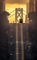 Walking The Dog (mikeSF_) Tags: california sanfrancisco street cablecar trolley train car dog walk walker silhouette sunrise orange hill nobhill steep city sf sanfran pentax k3ii mono landscape tracks rail rails cable
