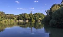Riflesso (M.a.r.t.Y) Tags: lago acqua travel explore riflesso roma