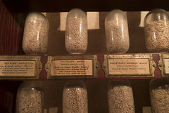 seager wheeler (Trevor Pritchard) Tags: hepburn saskatchewan museum wheat july 2016 seagerwheeler marquis history prairies rural