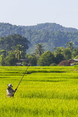ChiangRai_5962 (JCS75) Tags: canon chiangrai asia asie thailand thailande