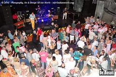 2016 Bosuil-Het publiek bij de 30th Anniversary Steady State 44