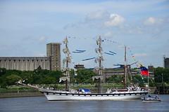Tall Ships Race 2016 Simon Bolivar DST_5117 (larry_antwerp) Tags: 2016 antwerp antwerpen       port        belgium belgi          schip ship vessel        schelde        sailing tallship simonbolivartall ships race
