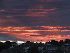 DSCF5683 (baskill) Tags: sunset sun set downs sussex