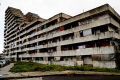 _DSC4223 (Parrasgo) Tags: urban streetart art blanco trash graffiti agua reflejo basura rubbish napoli fiore velas napoles escondido lavadoras pobreza secondigliano nascosto neveras camorra scampia gomorra