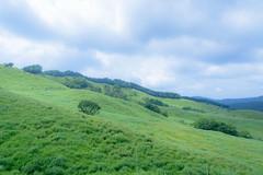 34Tonomine Highland (anglo10) Tags:   japan field