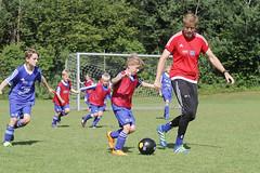 Feriencamp Neumnster 28.07.16 - b (50) (HSV-Fuballschule) Tags: hsv fussballschule feriencamp neumnster vom 2507 bis 29072016