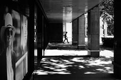 a moment of truth (gato-gato-gato) Tags: 35mm asph ch iso200 ilford leica leicamp leicasummiluxm35mmf14 leicasummiluxm50mmf14asph mp mechanicalperfection messsucher schweiz strasse street streetphotographer streetphotography streettogs suisse summilux svizzera switzerland wetzlar zueri zuerich zurigo zrich analog analogphotography aspherical believeinfilm black classic film filmisnotdead filmphotography flickr gatogatogato gatogatogatoch homedeveloped manual rangefinder streetphoto streetpic tobiasgaulkech white wwwgatogatogatoch zrich leicam6 m6 manualfocus manuellerfokus manualmode schwarz weiss bw blanco negro monochrom monochrome blanc noir strase onthestreets mensch person human pedestrian fussgnger fusgnger passant