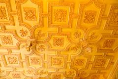 _NIK7012 (EyeTunes) Tags: asheville biltmore northcarolina garden nc hotel mansion museum