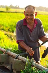 A Farmer (Azizasrar Photoghraphy) Tags: amateurtobepro travellight human farmer