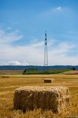 DSC_1430 (Marlon Fried) Tags: landschaft landscape stroh straw field feld acker getreide cereals