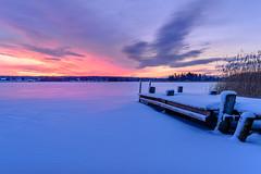 Winter Rest (Peter Vestin) Tags: nikondf sigma35mmf14dghsmart siruin3204x siruik30x adobecreativecloudphotography herrn skattkrr karlstad vrmland sweden vnern nature landscape seascape winter ice snow sunrise