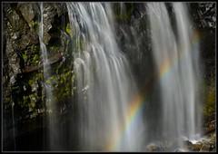 Narada Falls (Ernie Misner) Tags: naradafalls paradise mountrainiernationalpark paradiseriver washington erniemisner nikon nik capturenx2 cnx2 polarizer f8andbethere hoyahd3