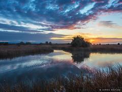 Morning Breaks (James Neeley) Tags: idaho marketlake sunrise jamesneeley