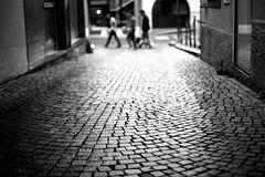 Blinded (Leica M6) (stefankamert) Tags: stefankamert blinded street highcontrast city town leica m6 m rangefinder mirrorless voigtlnder nokton ilford fp4 men dog analog film scan epson v550 dof grain black