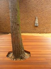 Himmelssule (Jrg Paul Kaspari) Tags: trier hausfrkinder kita naturnaher spielraum bauaktion baustelle muttergottes statue skulptur sculpture texturen textures minimal minimalism holz baum ziegel ziegelwand sand himmelssule polygonal