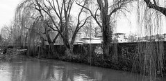 Oxford - Fisher row (martijnvansabben) Tags: street city uk bridge trees england blackandwhite white streetart black tree art college water wall painting grey graffiti vakantie blackwhite paint oxford shire oxfordshire muur lifeinblackandwhite holidayshot oxfordcity lifeingrey