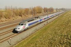 Belgian High Speed - TGV Rseau on it's way to Paris. (Franky De Witte - Ferroequinologist) Tags: de eisenbahn railway estrada chemin fer spoorwegen ferrocarril ferro ferrovia