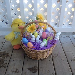 ** Joyeuses Pques / Happy Easter ** (Impatience_1) Tags: easter duck decoration canard dcoration impatience easterbasket happyeaster pques 2015 coth supershot saturnin joyeusespques fantasticnature 100commentgroup alittlebeauty coth5 ruby10 ruby15 ruby20 panierdepques