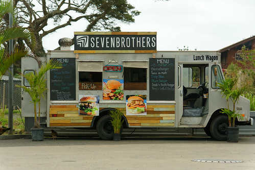 Seven Brothers Van