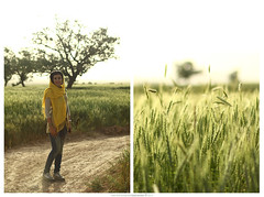 -I (pedramatic) Tags: sunset sky sun tree love me girl field yellow canon eos gold evening persian warm glow iran you farm f14 wheat warmth radiation persia usm f18 esfahan isfahan solmaz the canonef50mmf14usm persiangirl pedram ef50mm fieldofwheat hereyes 450d canoneos450d pedramatic thewarmthofloveandawheatfieldandradiation