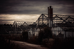 Abandoned Greenhouses