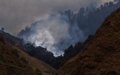 Little Sur River Canyon (Michael T. Morales) Tags: soberanesfire littlesurrivercanyon fire wildfire forestfire bigsur highway1