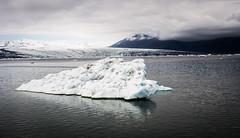 Jkulsrln 07 (arsamie) Tags: iceland jokulsarlon lagoon iceberg ice snow white reflection mirror water lake montain glacier volcano