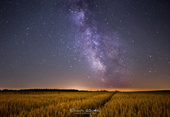 Rise of the Milky Way (Dennis Kirstein) Tags: panorama tree tower nature night germany stars landscape corn nightshot wheat sony natur galaxy schwarzwald blackforest milkyway kaltenbronn milchstrase astroscape