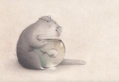 fat cat (Limn Celeste) Tags: illustration pencils cat drawing fishbowl gato draw chubby dibujo ilustracion