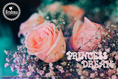 Braham-Wedding-Concept-Portfolio-Princess-Dream-1920x1280-18