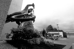 ...up against the wall (professional recreationalist) Tags: brucedean professionalrecreationalist victoriabc rockbaybmx rock bay bmx bicycle bike ride blackandwhite blackandwhitestreetphotography bw escher