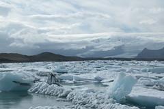 Jokulsrln_2190 (leoval283) Tags: ijsland iceland jokulsrln glacierlagoon ijs gletsjer