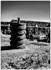 Dunbeath (Alan Cruickshank.) Tags: mono blackwhite fujixt1 fuji1024f4 fuji caithness sutherland