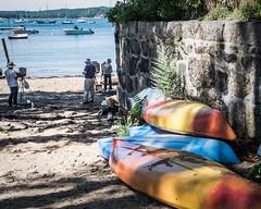 Art among the Kayaks (lclower19) Tags: gloucester massachusetts rockyneck boat harbor ocean atlantic artists painters people