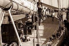 IMG_3078 (cristian.bailo) Tags: mare sea vele sail barche imperia regata storiche navi antiche liguria old camera kodak vintage fotocamera soffietto