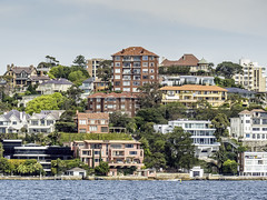"Harbour views (""Pam's Pet Pictures"") Tags: sydneyharbour harbourview harbourshoreline view sydney australia"