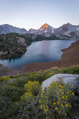 Convict Basin Sunrise (Sierra_Summits) Tags: high sierra sunrise sunset convict summer 2016 new fresh color flowers mammoth lakes nevada lake rust red yellow mountains yosemite wilderness culture volcanic east side august granite