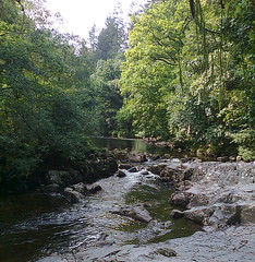 The River Conwy in Betws-y-Coed (southglosguytwo) Tags: 2016 cameraphoneshot holiday september sky wales betwsycoed riverconwy trees