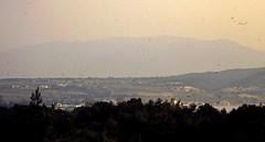 Grce, vacances de Pques 1987. Vue de notre chambre, Htel King Saron sur le golfe Saronique (Marie-Hlne Cingal) Tags: 1987 greece grce  hells  diaponumrise