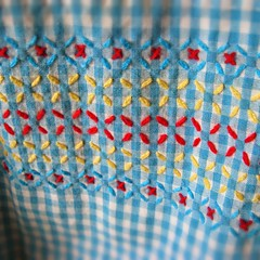 cross stitch on gingham (bewitchedmagic) Tags: crossstitch gingham chickenscratch