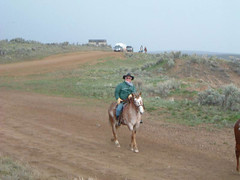horsedrive2003021