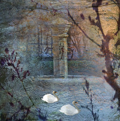 By The Old Fountain At Dusk (virtually_supine) Tags: trees fountain composite photomanipulation dusk digitalart creative textures swans layers digitalmanipulation gradientfill pse9 photoshopelements9 kreativepeopletreatthis74challenge sourceimagethefountainbylovettshoot