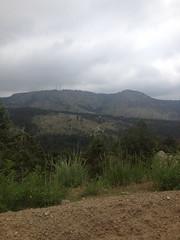 Estribaciones de las Montaas Rocosas en Boulder, Colorado, USA (dandrea.caroline) Tags: usa foothills tree rock arbol colorado boulder rockymountains sedimentary roca vegetacin relieve erosin orografa montaasrocosas geomorfologa sedimentaria estribaciones geografafisica