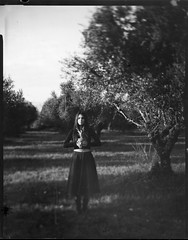 No (Salt.as) Tags: camera trees portrait sky sun white black blur green film girl face look grass fashion analog vintage print lens outdoors photography hands focus girlfriend dress large meadow olive shift sunny pineapple area epson 4x5 sheet format 100 contact v600 tilt ilford 56 unfocus cambo 2015 150mm fomapan ilfosol topcor 45cx