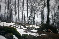 Alpe Rossa + Alpetto (Cani Sciolti Valtellina) Tags: snow mountains alps film 35mm mountainbike mtb neve clava alpi orobie montagna enduro singletrack pellicola deepinthewoods allmountain ravanare maybewrongvalley fuckmtbikers hilbombing