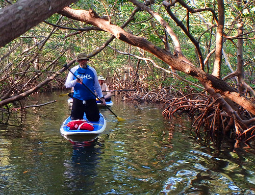 5-10-15 mikeDavidCrissSuzan-Lido-Key-Mangrove-Tunnels-Sarasota-FL   (5)