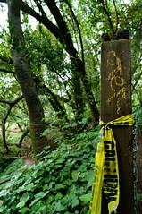 Sn ttulo (manuel.villemur) Tags: police scene crime park escena crimen parque