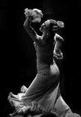 9813 (G de Tena) Tags: flores blancoynegro blanco mujer negro traje flamenco flamenca trajedegitana