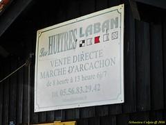 Arcachon, baignades et Plaisirs (sebastien colpin) Tags: arcachon baignade plages huitres plaisirs gironde france atlantique hotelmer
