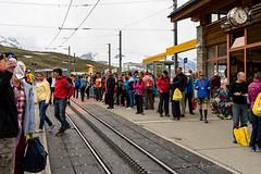 DSC04730_s (AndiP66) Tags: zermatt gornergrat marathon halfmarathon halbmarathon stniklaus riffelberg wallis valais schweiz switzerland lonzaag lonzabasel lonzavisp lonzamachtdichfit lonzamakesyoufit samstag saturday 2016 2juli2016 2ndofjuly2016 sony sonyalpha 7markii 7ii 7m2 a7ii alpha ilce7m2 sigma24105mmf4dghsmart sigma 24105mm f4 dg hsm art amount laea3 andreaspeters ch